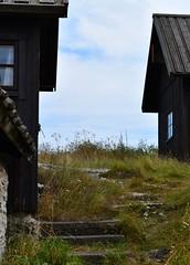 DSC_0059 (Lotsig) Tags: fiskelge village by gotland island  fisk fish fishing hus houses stugor cottages sommar summer stuga cottage