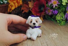 matilda03 (Zhanna Zolotina) Tags: teddy bear ooak dog miniature handmade blythe barbie tinydolhousetoyzz toyzz altair dollhouse puppenhaus