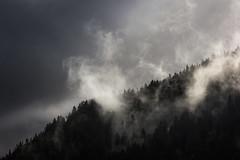 """(Isat"""") Tags: alps alpes france hautesavoie fort brume nature nuage montagne mountain moutains"""