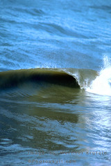 Breaking Wave Curl (Vern Krutein) Tags: tube curl spray surfing waves water ocean swell foam form surv01p0708b
