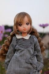 Cosmos & Ribbon💕 (cute-little-dolls) Tags: ruruko rurukodoll doll toy cosmos autumn happy ribbon petworks