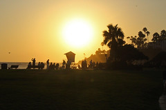 Day is Done (skipmoore) Tags: lagunabeach sunset lifeguardtower palm silhouettes