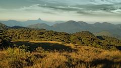 Adams Peak in der Ferne (Renate Bomm) Tags: adamspeak renatebomm srilanka mist morgen early 366 2016 ferne hochland canoneos6d ef24105mmf4l central nuwaraeliya nationalgeographicgroup flickrunitedaward