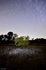 El Vals de las Estrellas (jaume vaello) Tags: nikond5100 nikon sigma1020 manfroto aitana estrellas stars circumpolar largaexposicin longexposure