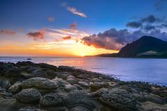 (DSC_3890) (nans0410(busy)) Tags: taiwan newtaipeicity ruifang rock sunrise dawn beach sky cloud northeastcoast outdoors scenery