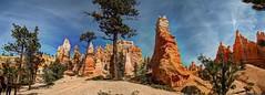 Queens Garden II (JoelDeluxe) Tags: bryce national monument park hoodoos redrocks views trails queens trail navajo loop ut hdr joeldeluxe