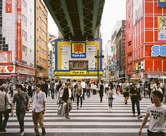 Akihabara Crossin (Kyle Pozan) Tags: akihabara tokyo japan mamiya mamiya7 mamiya7ii 120film kodak ektar 65mm crossing street city busy bustling streets metropolis negative colornegative colorfilm film shootfilm ishootfilm filmisnotdead analog
