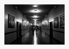 These Hallowed Halls (bnishimoto) Tags: fuji fujifilm myfujifilm nashvilleinconcert citynationalcivic sanjosetheaters sanjose bayarea bw x100s