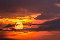 Camino al sol. Road to the sun (dariofuentes) Tags: atardecer bogot cielo landscape paisaje sky sol sun sunset bogot avin colores