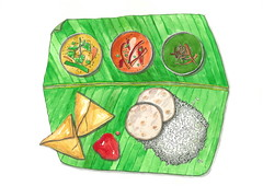 Indian food (kana hata) Tags: food india art illustration pen pencil ink watercolor painting sketch leaf rice drawing curry sketchbook banana daily samosa today