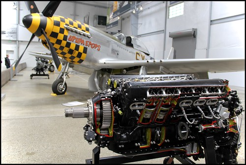 "Rolls-Royce Merlin Cutaway and North American P-51D Mustang ""Upupa Epops"""