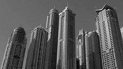 Dubai marina towers (PIVAMA|photography) Tags: building tower marina buildings dubai apartments princess towers torch fakkel aprtment