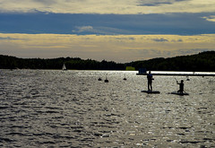 Silvery sea & silhouettes (Joni Mansikka) Tags: summer nature sea shore sailingboat paddlers paddleboarding sup silhouettes landscape outdoor archipelago balticsea airisto suomi finland tamronspaf2875mmf28xrdildasphericalif