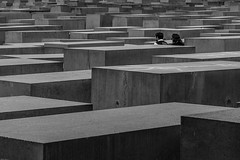 Garden of stones (Mathay Jean-Luc) Tags: berlin allemagne de canon eos rebelt3 1100d sigma sigma1750mm bw bnw blackandwhite city street abstract holocaust jews people souvenir memorial garden stones concrete germany deutschland trip journey voyage noiretblanc cityscape cubes monument slabs stelae eisenman architecture topf75