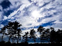 Sky at Jeju island (floriansins) Tags: sky clouds beautifulnature beautifulplace olympusphotography photographyislife beautifullandscape olympus ocean em1 40mm f28 ocan ciel eau paysage rivage littoral extrieur cte nuage southkorea jejudo jeju oedolgae korea sun sunshine