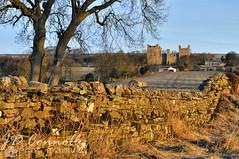 Bolton Castle. (Jason Connolly) Tags: castlebolton boltoncastle wensleydale yorkshire yorkshiredales yorkshiredalesnationalpark theyorkshiredalesnationalpark northernengland england castle