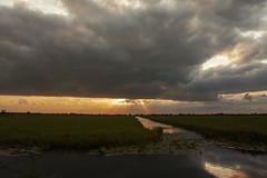 sunset and rainy clouds (dutch friends) Tags: sunset rainy clouds zonsondergang nederland holland dutch netherlands wolk wolken grass gras cow water sloot orange oranje sun rays rain cloud dark summer demmerik utrecht utreg