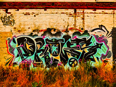 Grass and Graffiti (Steve Taylor (Photography)) Tags: cnd drows star art digital graffiti streetart tag wall brown green colourful red black blue brick newzealand nz southisland canterbury christchurch cbd city grass weeds