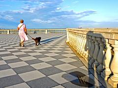 La dura vita di uno street photographer ..... (Fabio Pratali LI) Tags: livorno terrazzamascagni toscana people