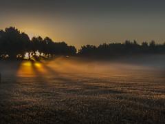 Sonnenaufgang mit Nebel (Peter L.98) Tags: sonnenaufgang nebel feld strohballen sonne morgens
