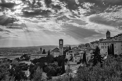 Assisi Light of God (Maurizio Imbriale) Tags: bw blackwhite collectingsouls creativecommons decisivemoment explore faces flickr flickriver italy maurizioimbriale moments monochrome nikond3200 portrait rome scenephotography worldstreetphotography candidpeople portraitstreet