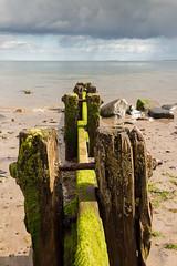 untitled-0570 (Mark Huff1) Tags: alnmouth beach england events hfholidays northsea northumberland sea unitedkingdom