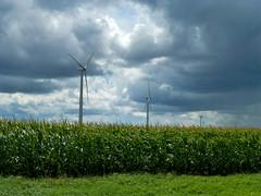 Southwest MN (plethora4834) Tags: windturbine field sky clouds corn