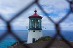 Makapu'u Lighthouse (notgnal) Tags: bigwaves eastside huricane makapuu makapuutrail sandys waves sonyalpha sonyphoto sony a7r sonya7r sel28f20 photooftheday project365 365 365project