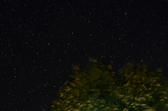 under the night sky (Stephanie Loy Son) Tags: madawaska canada longexposure palmerrapids nightsky stars 50mmf14 nikond7000 nature