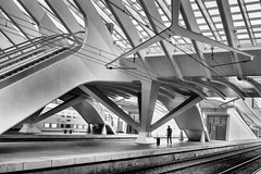 The lone traveller (James- Burke) Tags: abstract atmospheric belgium bench blackandwhite bw candid casual commute commuting fuji guilleminsstation liege monochrome motion people peoplewatching railways street streetcandid trains travel buildings architecture