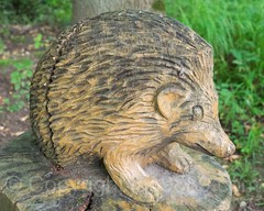 Igel Wood Sculpture, Emmen, Lucerne, Switzerland (jag9889) Tags: sculpture jag9889 hedgehog reuss 20160727 wood publicart centralswitzerland switzerland emmen outdoor 2016 europe igemmenimwald cantonlucerne alpine art artist ch carver figurenweg forest foresttrail helvetia holz holzskulpturenweg innerschweiz interessengemeinschaft kantonluzern lu landscape lucerne luzern reussuferweg riverbank schnitzer schweiz skulptur skulpturenweg streetart suisse suiza suizra svizzera swiss woodcarver zentralschweiz