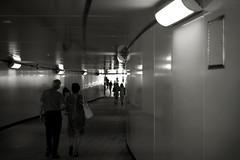Nuevo pasadizo (Bichuas (E. Carton)) Tags: cruzar cross luz light sombra shade pasadizo passage camino road egia donostia sansebastian safecreative