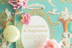 inspiration ([o] suze q) Tags: inspiration decoration laduree macaron vibrant colors stilllife roses pink green pistachio aqua gilded stylized pretty