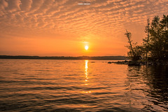 Fragile Thoughts (Fredrik Lindedal) Tags: lake water trees tree sun sunlight sunrays glow clouds cloud earth nature ilovenature ilovesweden silence glimmer gaia onewithnature fredriklindedal nikon d7200 orange red yellow tripod
