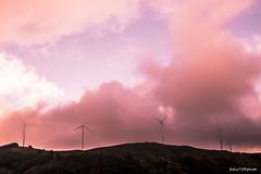 Fumogenata (Fabio75Photo) Tags: pale eoliche rosa tramonto fumogeni fumo montagna bosco landscape panorama zeri energia