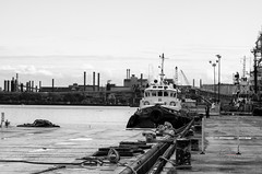 10/3 another lonely angler (_Matt_T_) Tags: fisherman hamilton smctakumar135mmf25 sioct2016 singlechallenges harbourfront tugboat niksilverefexpro2