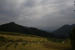 Guangdong (Jil Kristin) Tags: guangdong china nature weekend canon digital rice cultivation mountains view clouds