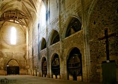 Spiritual & Spirits - Abbaye de Valmagne - Villeveyrac - Hrault - France (D. Pacheu) Tags: abbaye de valmagne villeveyrac hrault france church eglise pacheu tonneau wine futs fut croix cross crucifix