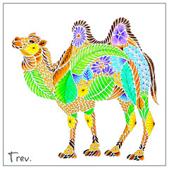Bactrian Camel - Camelus bactrianus (Trev Grant) Tags: camel bactriancamel camelusbactrianus milliemarotta curiouscreatures acolouringbookadventure colouring colouringbook colouredpencils fabercastell polychromos 2016 11thoctober2016
