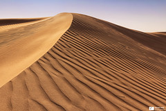 Desert (Daniel Wildi Photography) Tags: sand dunes desert unitedarabemirates uae dubai nature naturespatterns landscape danielwildiphotography 2016 ripples sun heat hot jebelfayah visipix