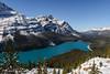 Peyto Lake (Witty nickname) Tags: peytolake glacierlake banffnationalpark banff icefieldsparkway pinetrees trees nikond800 nikkor2470mmf28 mountains rockymountains snow hike landscape alberta albertalandscape