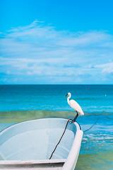 Heron (Luis Montemayor) Tags: heron bird ave hoblox sea ocean mar oceano beach playa boat bote clouds nubes sky cielo