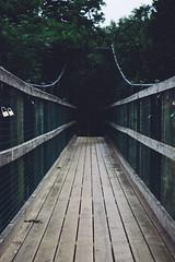Suspension Bridge (Alex Holyoake) Tags: fortwilliam scotland unitedkingdom gb mountain mountainrange bennevis river hill rockface driving mirror car clouds mist