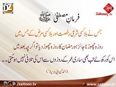 17-6-16) dz group (zaitoon.tv) Tags: saw message prophet mohammad islamic quran namaz hadees ahadees
