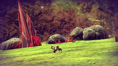 Tiny Turtle Cow (peterlmorris) Tags: videogame nomanssky hellogames sciencefiction space spaceship fighter starfighter animal alien