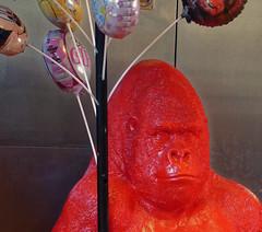 Gare aux gorilles - Beware of gorillas (p.franche on - off) Tags: schaerbeek schaarbeek bruxelles brussel brussels belgium belgique belge europe pfranche pascalfranche panasonic fz200 hdr dxo flickrelite gorille animal red rouge ballons child enfant hpitalpaulbrien paulbrienhospital plastic plastique balloon jouet