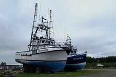 Fishing boats in the shipyard of Newport, Qubec (Ullysses) Tags: newport qubec canada gaspesie summer t fishingboat fishingvessel chandler shipyard boatyard lincorruptible bussola