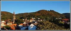 Hochsommer-Augustabend mit schon herbstlich gefrbten Buchenwldern (elke.kemna) Tags: badharzburg burgberg bergpanorama frhherbst herbst elkekemna