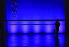 Une ombre dans le bleu... (Pi-F) Tags: ombre mosque abudhabi bleu clairage lumire nuit silhouette