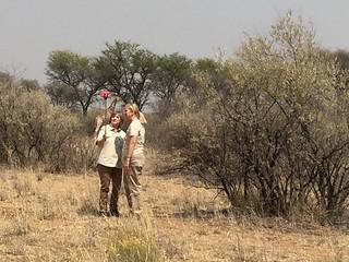 Namibia Plainsgame Hunt - Kalahari Desert 20